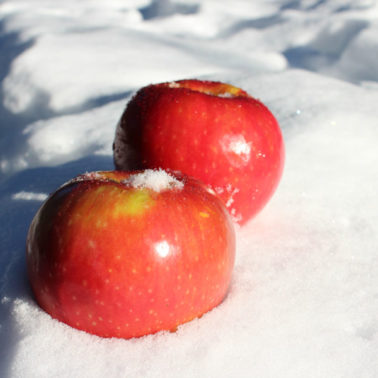 Sugarbee Apples